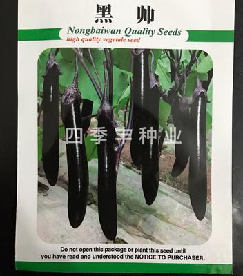 四川省成都市金牛区茄子种子