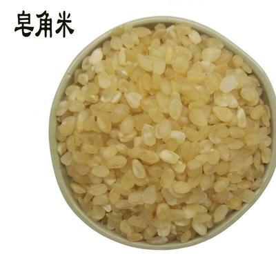 贵州省毕节市织金县皂角米