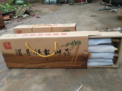 娌冲崡鐪佺劍浣滃競娓╁幙閾佹灞辫嵂 40~50cm