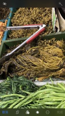 浙江省宁波市慈溪市雪里红酸菜