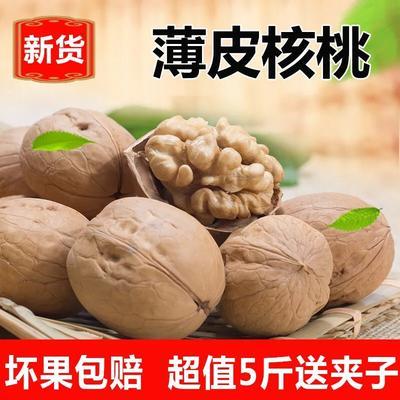 陕西省西安市新城区薄皮核桃