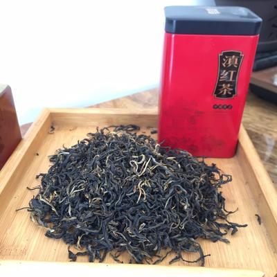 云南省普洱市思茅区古树红茶 散装 二级