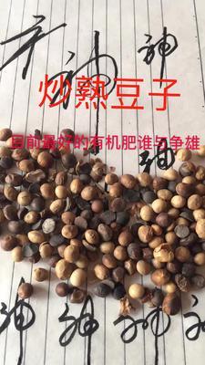 山东省威海市文登区黄黄豆 熟大豆 2等品