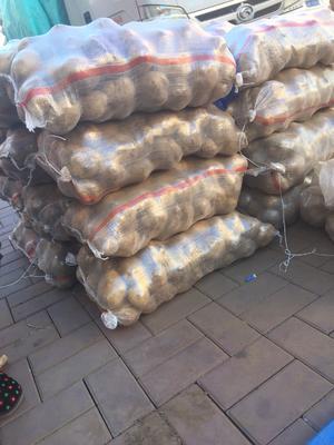 吉林省长春市朝阳区尤金885土豆 2两以上