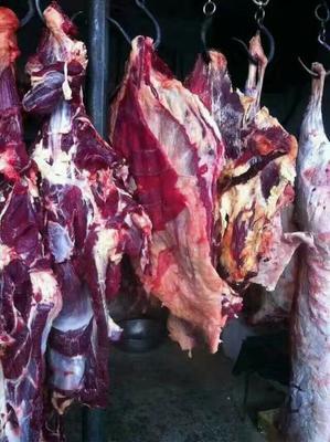 青海省西宁市城东区藏族牦牛肉 生肉