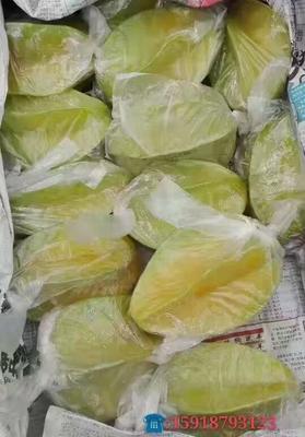 广东省惠州市龙门县甜杨桃 4 - 5两
