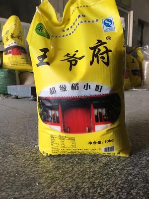 吉林省松原市前郭尔罗斯蒙古族自治县秋田小町大米 绿色食品 晚稻 一等品