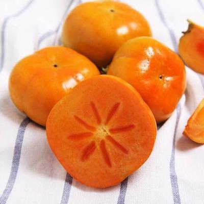 云南省昆明市西山区脆柿 3 - 4两以上