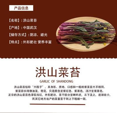湖北省武汉市汉阳区红菜苔 30~35cm