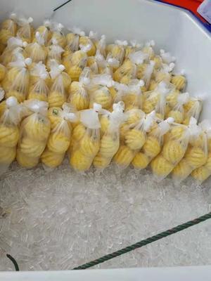贵州省贵阳市花溪区泰国小菠萝 1 - 1.5斤
