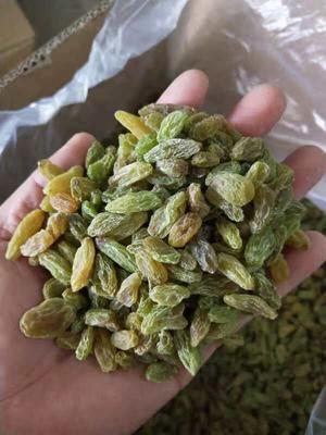 新疆维吾尔自治区吐鲁番地区吐鲁番市新疆绿葡萄干 二等