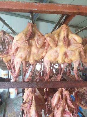 这是一张关于腊鸡 散装的产品图片
