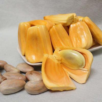 广西壮族自治区崇左市凭祥市红肉菠萝蜜 10-15斤