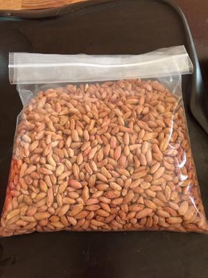 这是一张关于秕花生 干货 花生米的产品图片