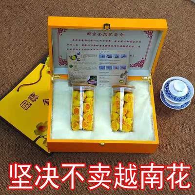 广西壮族自治区防城港市防城区金花茶 35cm以上