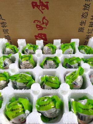 广西壮族自治区钦州市钦南区海鸭蛋 食用 箱装