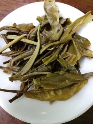 广东省广州市番禺区大叶古树普洱茶 礼盒装 特级