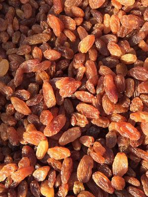 新疆维吾尔自治区吐鲁番地区吐鲁番市红葡萄干 二等