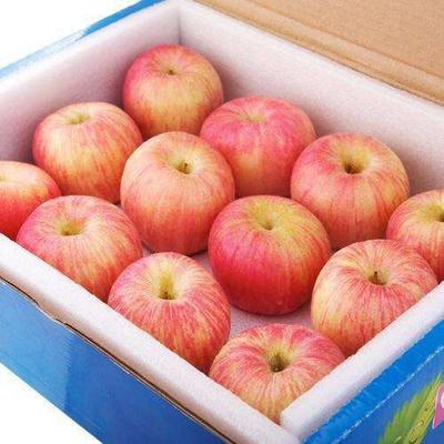 这是一张关于红富士苹果 纸+膜袋 表光 100mm以上的产品图片