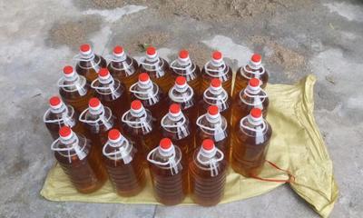 广西壮族自治区柳州市三江侗族自治县压榨一级山茶油
