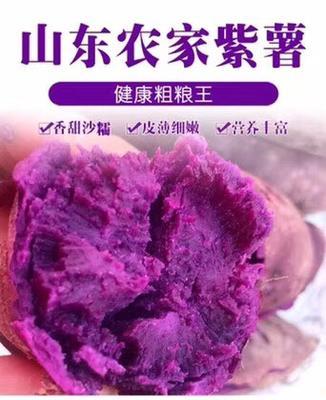 山东省枣庄市山亭区紫罗兰紫薯 混装通货