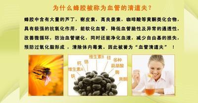 河南省郑州市新郑市蜂胶 24个月以上