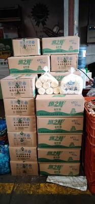 上海嘉定区白金针菇 <10cm <1.5cm 未开伞 二级