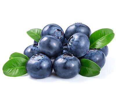 贵州省黔东南苗族侗族自治州凯里市蓝丰蓝莓 冻果 4 - 6mm以上