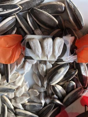 内蒙古自治区呼和浩特市武川县葵瓜子 袋装