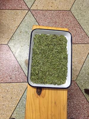 浙江省绍兴市诸暨市高山绿茶 礼盒装 二级