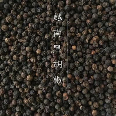 广西壮族自治区玉林市玉州区黑胡椒