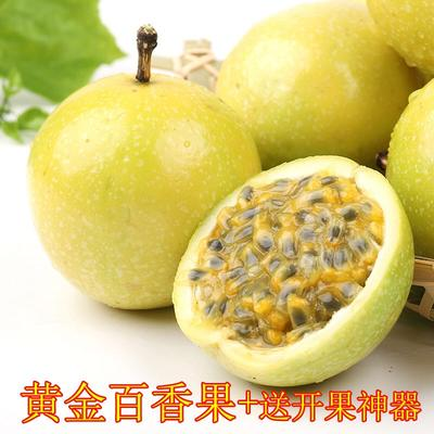 广西壮族自治区南宁市青秀区黄金百香果