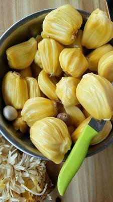 云南省普洱市江城哈尼族彝族自治县泰国菠萝蜜 10-15斤