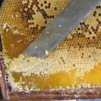 广西壮族自治区来宾市金秀瑶族自治县野生蜂蜜 塑料瓶装 2年以上 95%以上