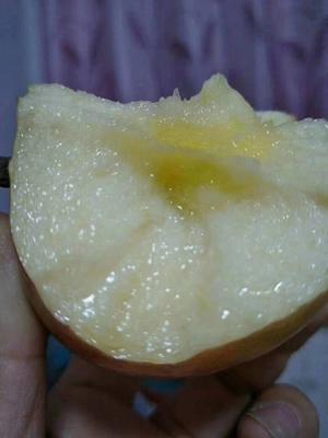 这是一张关于冰糖心苹果 60mm以下 日晒面 膜袋的产品图片