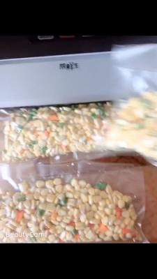 福建省漳州市长泰县水果玉米 去壳 甜糯