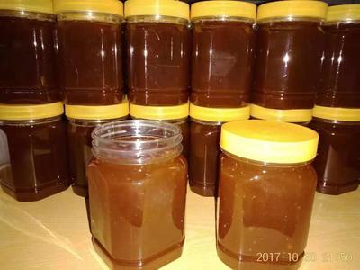 广东省深圳市龙华区土蜂蜜 塑料瓶装 1年 90%以上