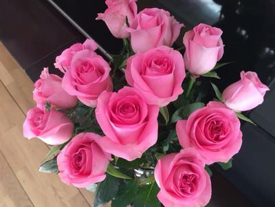 云南省昆明市五华区切花玫瑰