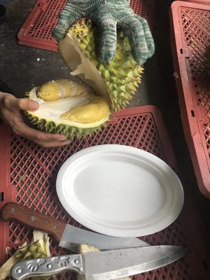 这是一张关于干荛榴莲 80 - 90%以上 3 - 4公斤的产品图片