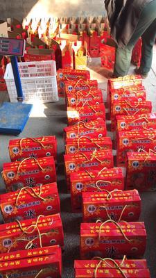 这是一张关于麻阳冰糖橙 55 - 60mm 2.5两的产品图片