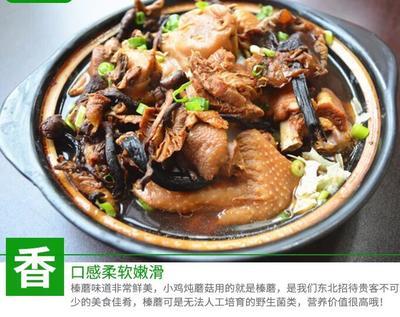 这是一张关于生野干榛蘑 12-18个月 长白山野生榛蘑的产品图片