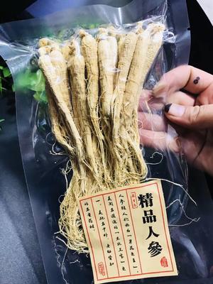 这是一张关于园参 全须生晒参 袋装 整根的产品图片