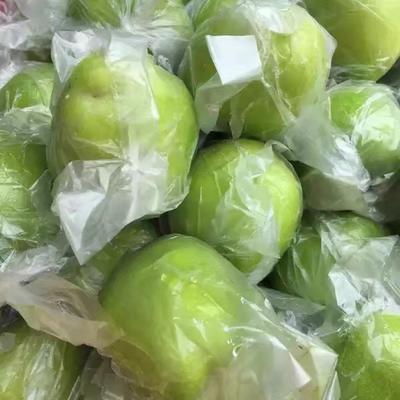 这是一张关于青枣 直口 40-50g的产品图片