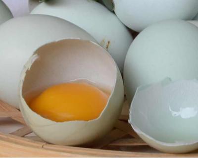 湖南省长沙市芙蓉区土鸡蛋 简包装 食用 洞乡源味土鸡蛋