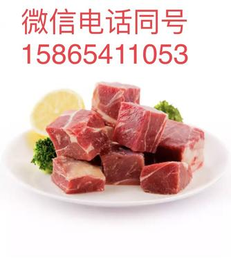 山东省滨州市阳信县牛肉块 生肉
