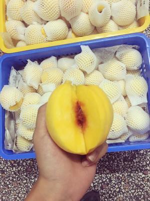 广东省深圳市龙岗区炎陵黄桃 4两以上 60mm以上