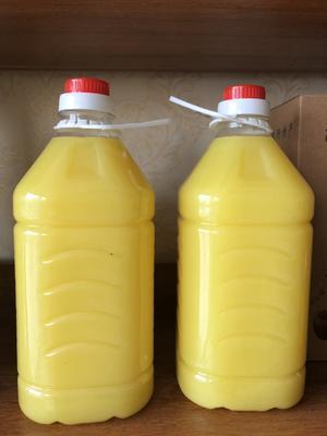 河南省郑州市管城回族区压榨花生油 自家压榨纯正花生油