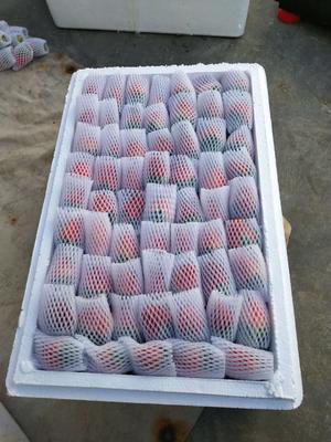 这是一张关于红颜草莓 的产品图片