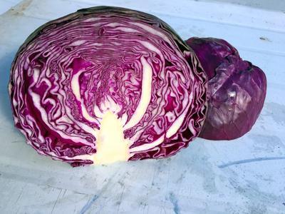 这是一张关于紫甘蓝 1.0~1.5斤 的产品图片