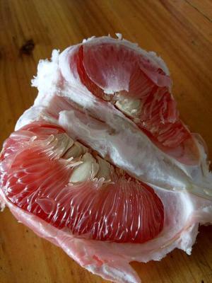 江西省赣州市章贡区马家柚